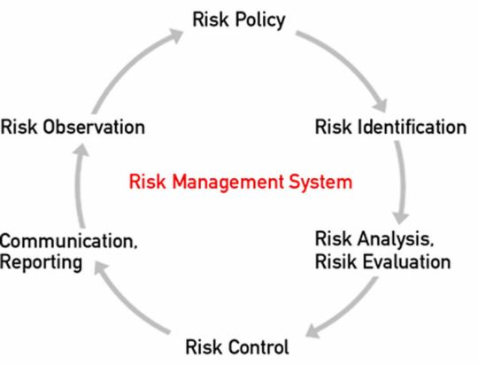 Graphic: Risk Management System
